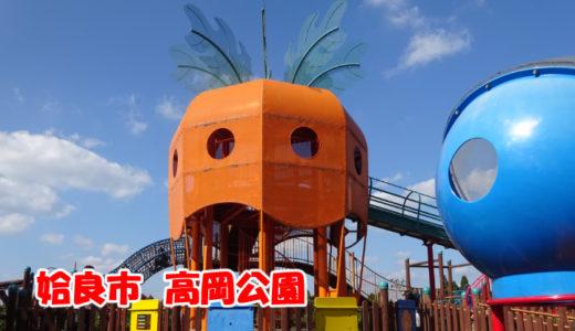 姶良市加治木町にある高岡公園、桜島が一望できて最高!