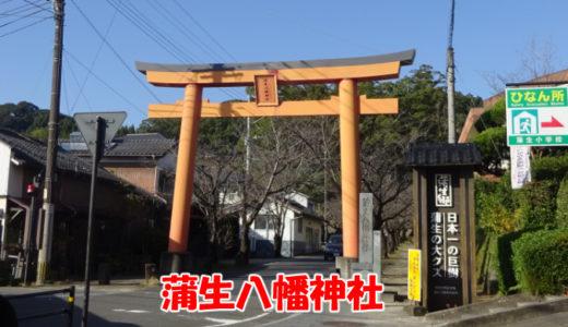 蒲生八幡神社にある日本一の巨樹【蒲生のクス】を見てきたよ